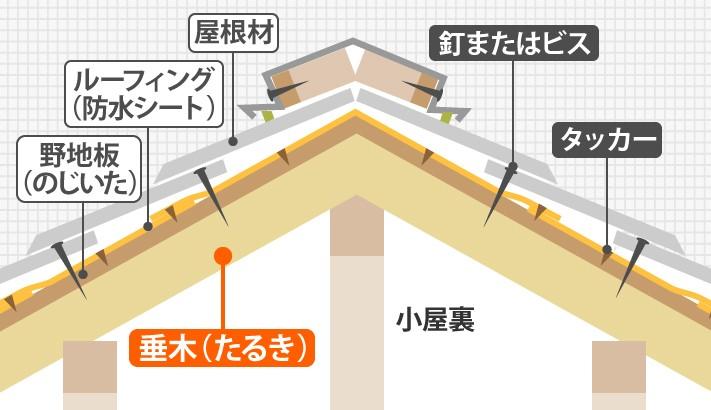 垂木周辺の屋根の構造