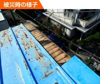 強風で被害を受けたトタン屋根