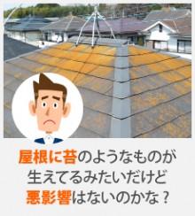 屋根に苔のようなものが生えてるみたいだけど悪影響はないのかな?
