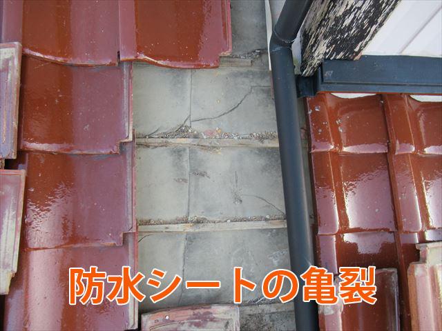 防水シートの亀裂