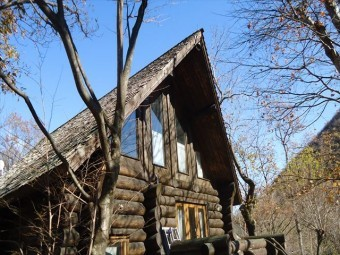 木の屋根材が落下した現場