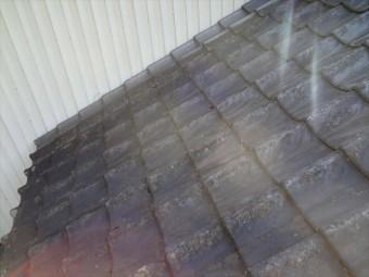 トップライト設置予定のセメント瓦屋根