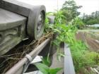 集水器から草