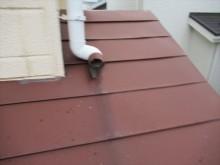台風によって切断されたハイ樋