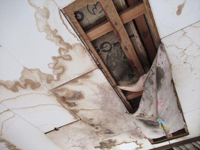 雨漏りで2階天井クロス剥がれ