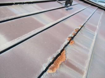 屋根材の塗膜が取れて錆びています。