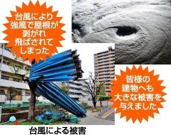 台風による被害